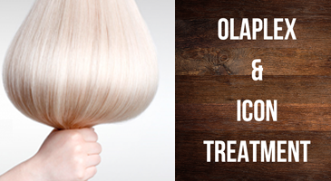 Olaplex & Icon Treatment
